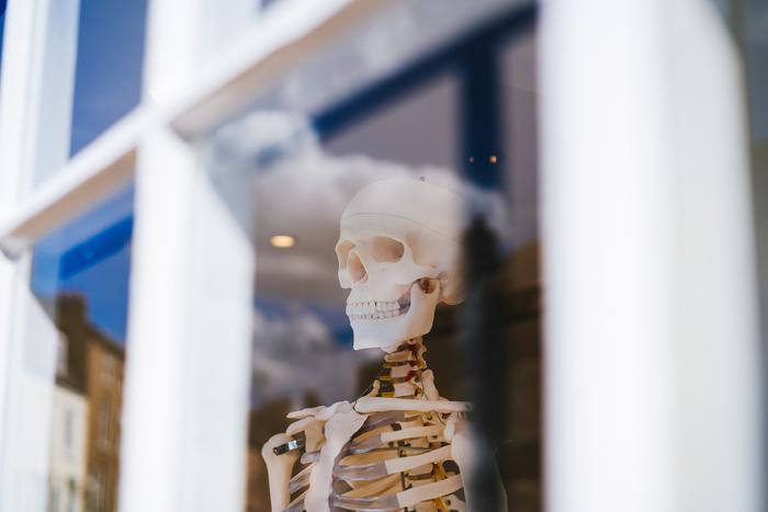 image of Bone Health