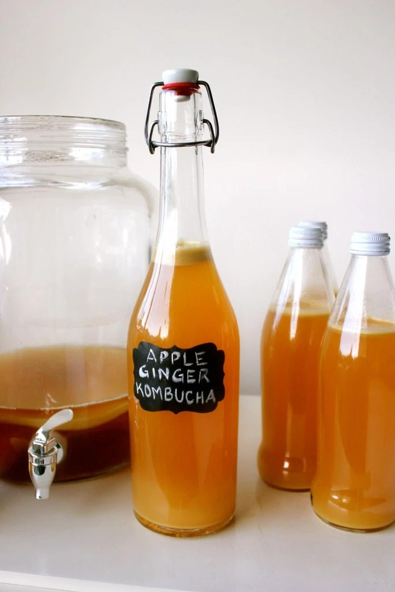 Main image of Homemade Kombucha: Continuous Brew