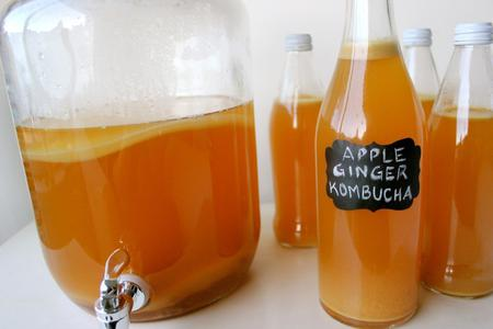 main image of the article: Homemade Kombucha Tips & Troubleshooting