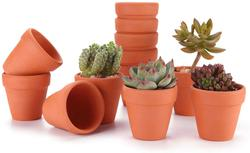 image of Mini terracotta pots
